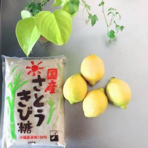 【簡単・爽やか】自家製レモンシロップ