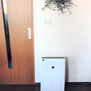 【ウイルス対策】空気清浄機を購入