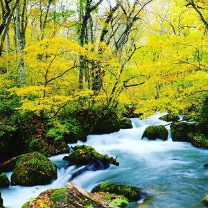 【青森県】奥入瀬渓流📷ぶらり旅【癒しの風景】09-29