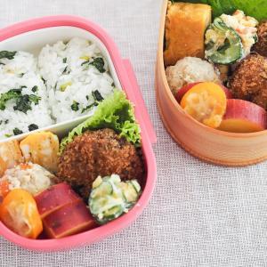 【入園準備】幼稚園のお弁当練習|理想の栄養バランスとメニュー