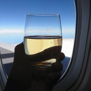 ビジネスクラスで行く家族3人特典航空券の旅②
