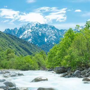 新緑萌える早月川からの剱岳