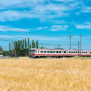一日一本の特急と麦秋:富山地鉄