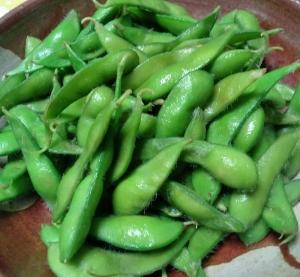 今期第二弾の枝豆