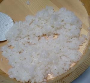 タマちゃんの焼き鯖寿司