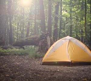 千葉:内浦山県民の森オートキャンプ場
