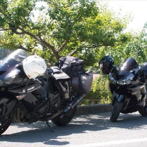 自分のバイクを生き物に例えるなら。