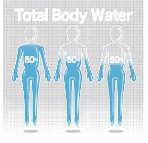 体内水分量の不思議?浮腫と潤いの違い