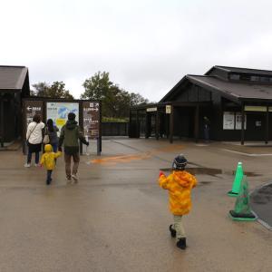 マイルで行く!紅葉の北海道2019②