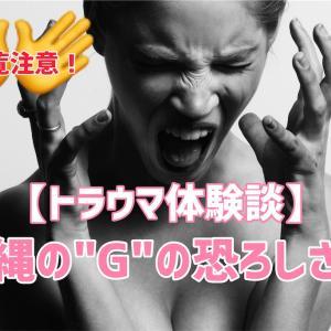 """37w3d:【体験談】忘れていた、沖縄の""""G""""の恐ろしさ。"""