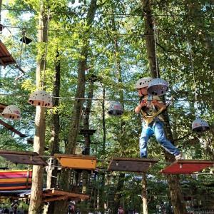 猿の梢を渡る如し【Fun Forest AbenteuerPark Kandel】