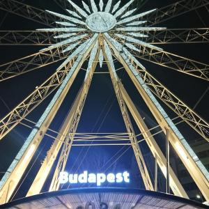 ブダペストに映える観覧車【Budapest Eye】