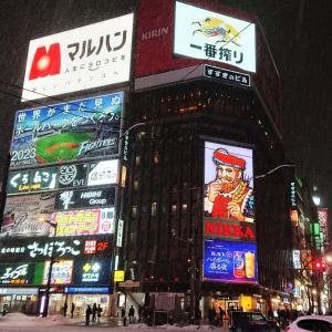 2020年冬の北海道・子連れ旅