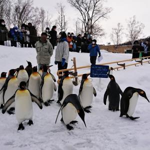 あなたに、伝えたい事がある。『旭山動物園』【北海道】