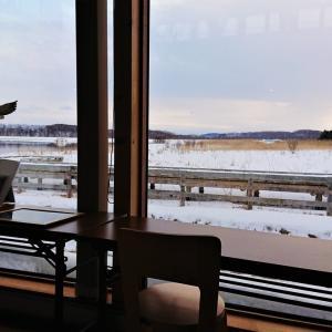 【バード・ウォッチング】濤沸湖水鳥・湿地センター【北海道】