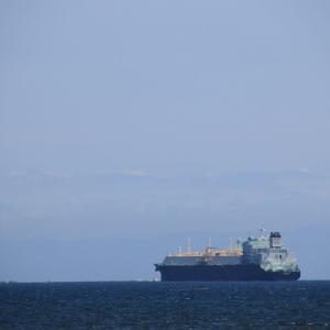 道南爺様日記 LNGタンカー MARVEL HAWK 函館沖 入港中 20200729
