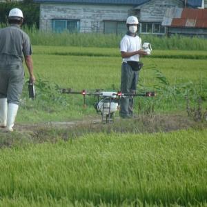 道南爺様日記 農業技術の革命20200812