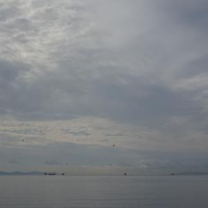 道南爺様日記 2020-10-08の函館湾