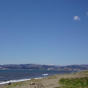 道南爺様日記 函館湾 春だ 久根別小学校裏 2021-04-21