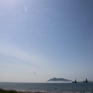 道南爺様日記 海霧に浮かぶ函館山と 函館湾ハマナス咲く20210603
