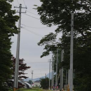 道南爺様日記 田舎の風景 七飯町鶴野地蔵堂付近20210619