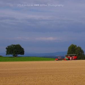 赤いトラクターと赤いポテトハーベスター