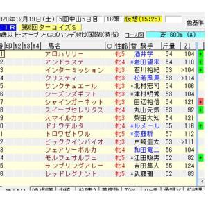 【指数で当てる】ターコイズS ZI指数馬 過去3年を分析した推奨馬