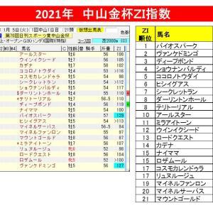 【指数で当てる】中山金杯2021 ZI指数馬 過去3年を分析した推奨馬