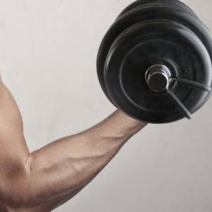 腕太くするなら肩と胸と背中もそれ相応に
