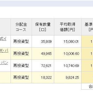積立NISA 令和元年6月17日 資産状況