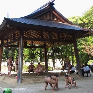 〈住吉神社〉で浅香山部屋の朝稽古を見学しました!