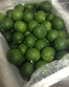 柚子胡椒は手作りに限る!!作り方も意外と簡単☆