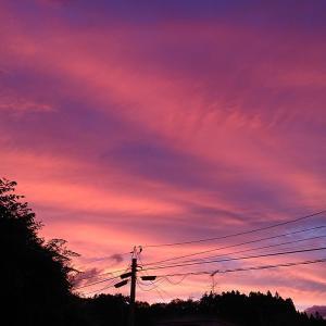 夕焼けが綺麗でした