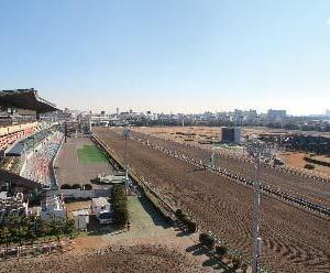 【船橋】【クイーン賞】地方競馬実況7265【年末】【ナイター】