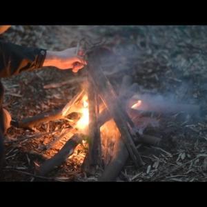冬の竹林 ブッシュクラフトキャンプ Bushcraft overnight in bamboo forest at winter