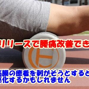 腰痛に筋膜リリースは効果あるの?【科学的根拠から紐解く】
