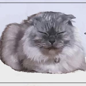 【ちょっと悲しい...】猫のイラスト描いてみたがあまり反応もらえなかった話