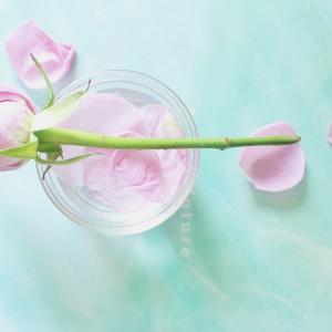 お花のある暮らし♪サブスクflower写真館【随時更新】