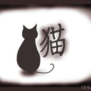 【実体験 怖い話】第十三夜 猫 はじまりの話。