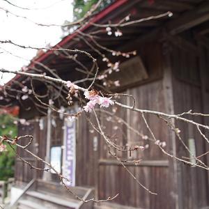 貴布禰神社(キフネジンジャ)