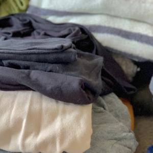 春が来たから冬服を整理する【断捨離】