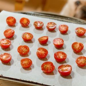 ストーブ料理|適当レシピのセミドライトマトと其れを狙う犬。