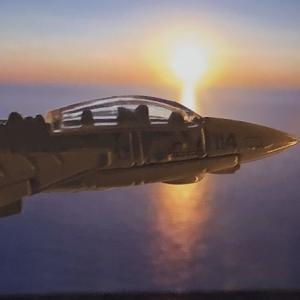 HW TOP GUN  GRUMMAN  F-14  TOMCAT  。