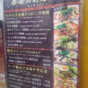 西安刀削麺酒楼 本厚木店(本厚木)にて 麻辣刀削麺(中)+棒餃子(2019/04/25)