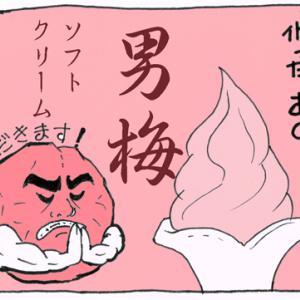 江の島 男梅ソフト&貝殻アイスもなか