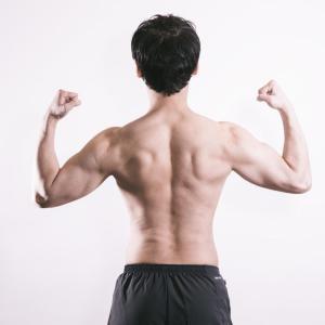 痩せ型で太れない人必見 筋トレしてても体重が増えない理由と対処方法についてわかりやすく解説する