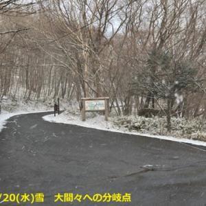 2019/11/20(水)山の駅たかはら情報!初雪です。滝35%