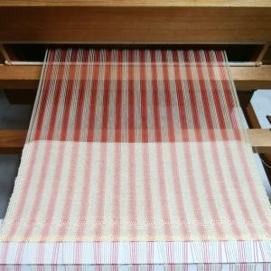 ベージュで縞をマイルドに。~織り~