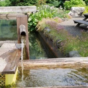車中泊で「水」を確保する3つの方法。地元の湧水に出会うことも!