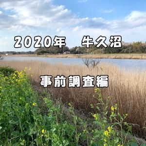 2020年 春の牛久沼実釣 事前準備編